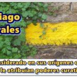 Aprende más sobre balneoterapia en Santiago de Compostela